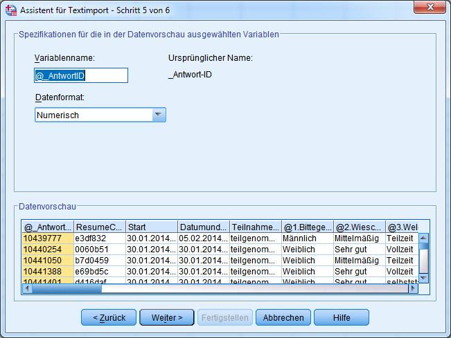 8-SPSS-Textimport-Schritt-5-Variablenname-OK