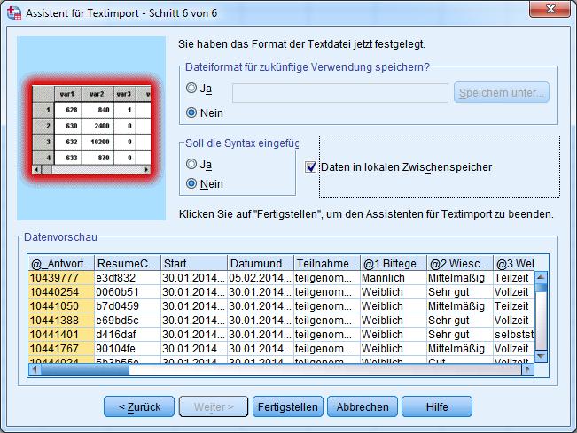 9-SPSS-Textimport-Schritt-6-Fertigstellen
