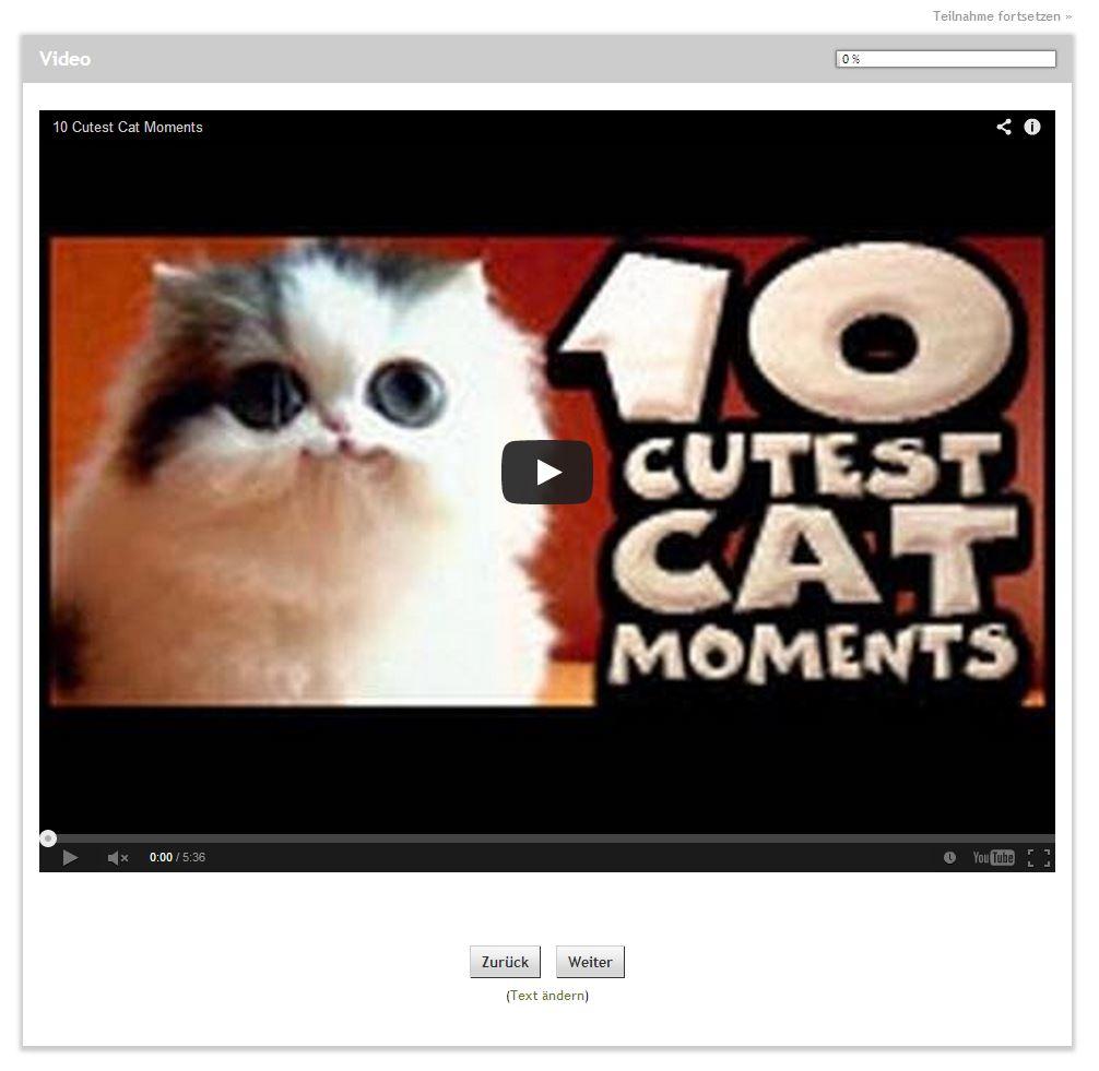 video-eingefügt-im-fragebogen